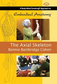axial_skeleton_0